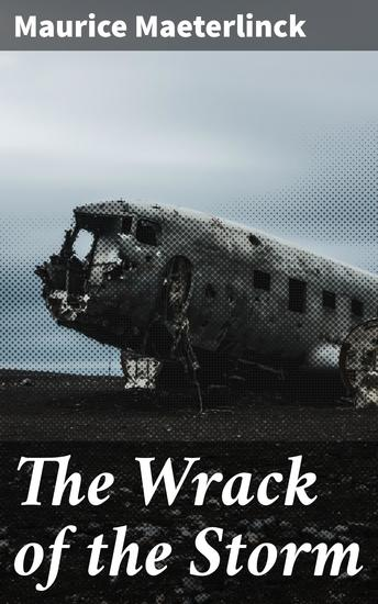 The Wrack of the Storm - cover