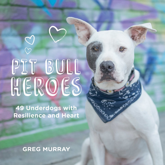 Pit Bull Heroes - 49 Underdogs with Resilience and Heart - cover