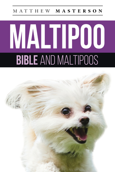 Maltipoo Bible And Maltipoos - Your Perfect Maltipoo Guide Maltipoo Maltipoos Maltipoo Puppies Maltipoo Dogs Maltipoo Breeders Maltipoo Care Maltipoo Training Health Behavior Grooming Breeding History and More! - cover