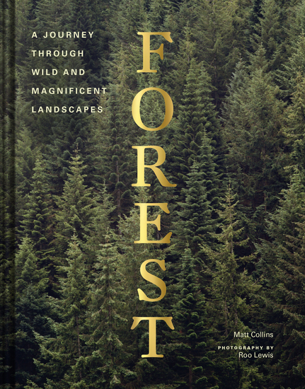 Forest - cover