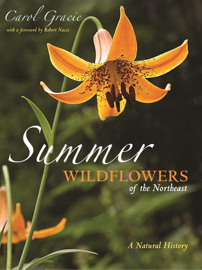 Summer Wildflowers of the Northeast - A Natural History - cover