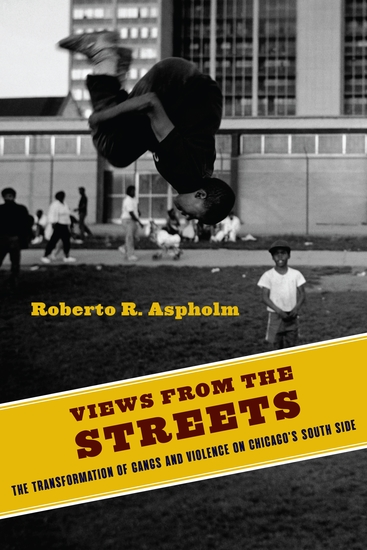 Views from the Streets - The Transformation of Gangs and Violence on Chicago's South Side - cover