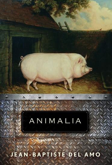 Animalia - A Novel - cover