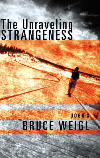 The Unraveling Strangeness - Poems - cover