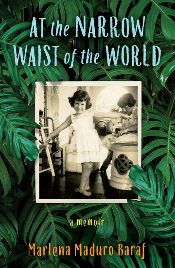 At the Narrow Waist of the World - A Memoir - cover