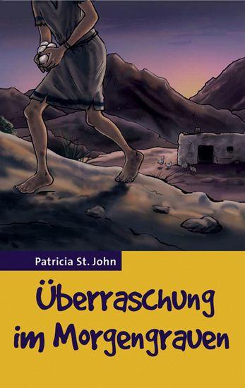 Überraschung im Morgengrauen - cover