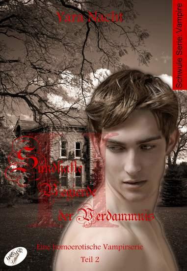 Sündhafte Begierde der Verdammnis II - Eine homoerotische Vampirserie Teil 2 - cover