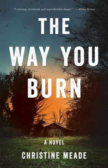 The Way You Burn - A Novel - cover