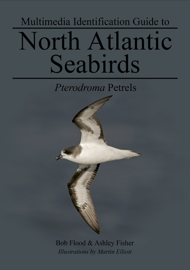Pterodroma Petrels - North Atlantic Seabirds - cover