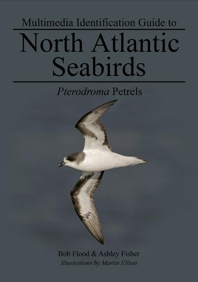 Pterodroma Petrels - North Atlantic Seabirds - cover