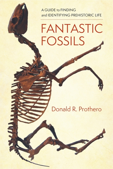 Fantastic Fossils - A Guide to Finding and Identifying Prehistoric Life - cover