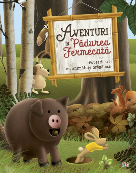 Aventuri în Pădurea Fermecată - cover