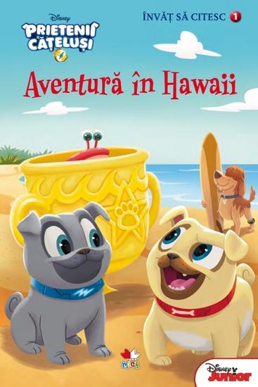 Învăț să citesc Nivelul 1 PRIETENII CĂȚELUȘI Aventură în Hawaii - cover