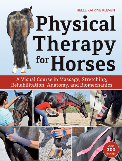 Physical Therapy for Horses - A Visual Course in Massage Stretching Rehabilitation Anatomy and Biomechanics - cover