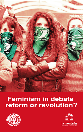 Feminism in debate reform or revolution? - cover