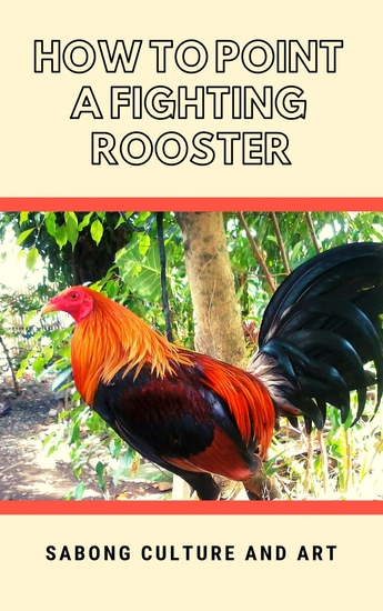 How to Point A Fighting Rooster - cover