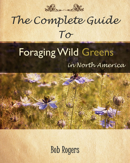 The Complete Guide to Foraging Edible Wild Greens in North America - cover