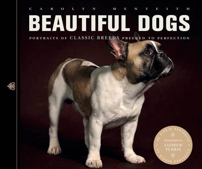 Beautiful Dogs - Portraits of Classic Breeds Preened to Perfection - cover