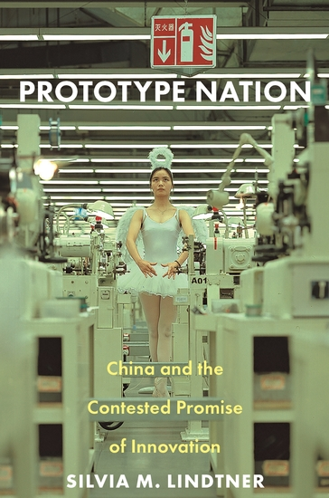 Prototype Nation - China and the Contested Promise of Innovation - cover