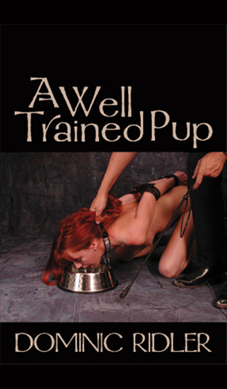 A Well Trained Pup - cover