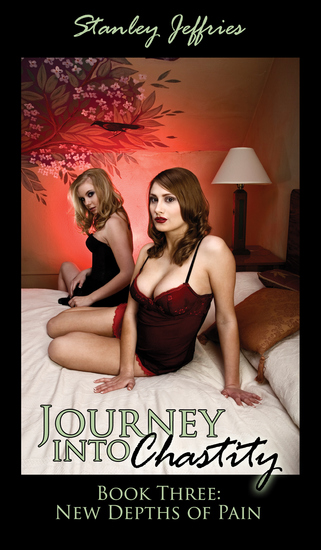Journey Into Chastity Book Three - New Depths of Pain - cover