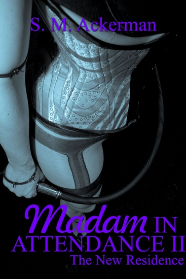 Madam In Attendance II - cover