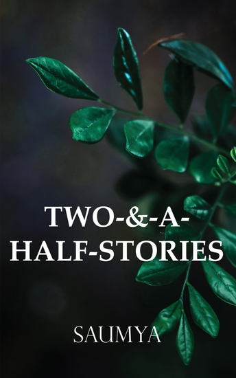 Two-&-A-Half-Stories - cover