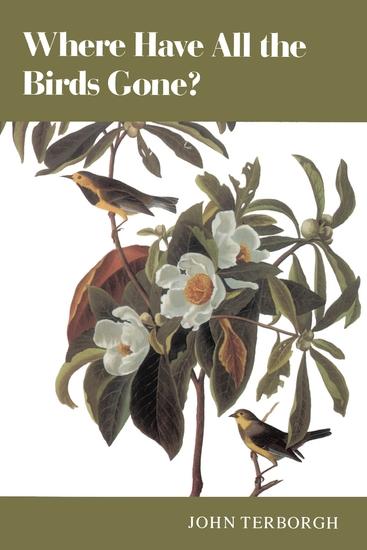 Where Have All the Birds Gone? - Essays on the Biology and Conservation of Birds That Migrate to the American Tropics - cover