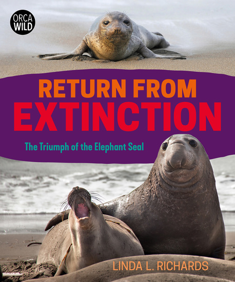 Return from Extinction - The Triumph of the Elephant Seal - cover