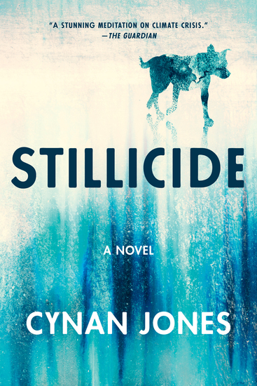 Stillicide - A Novel - cover