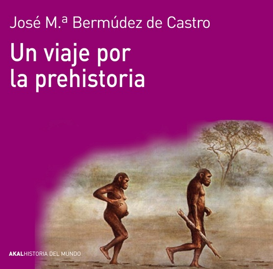 Un viaje por la prehistoria - cover
