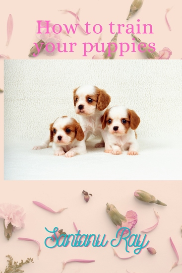 How To Train Your Puppies - cover
