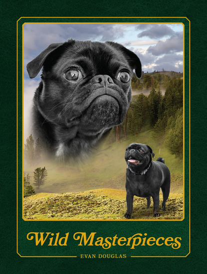 Wild Masterpieces - A Collection of Inspiring Animal and Pet Portraits - cover