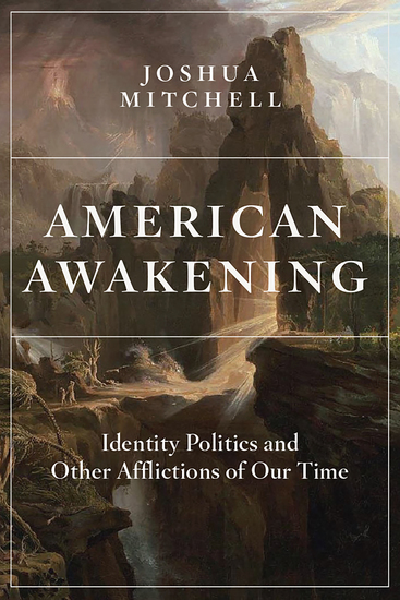 American Awakening - Identity Politics and Other Afflictions of Our Time - cover