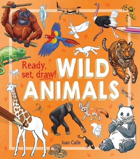 Ready Set Draw!: Wild Animals - cover