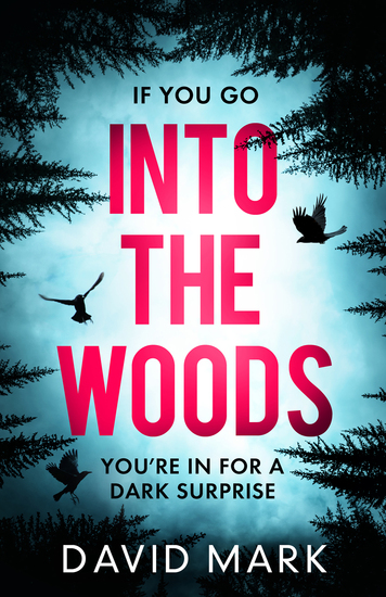 Into the Woods - A gripping escapist thriller from the Sunday Times bestselling author of Richard & Judy pick Dark Winter - cover