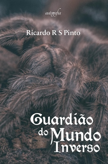 Guardião do mundo inverso - cover