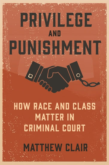 Privilege and Punishment - How Race and Class Matter in Criminal Court - cover