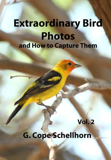 Extraordinary Bird Photos and How to Capture Them Vol 2 - cover