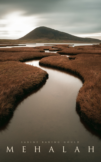 Mehalah - Gothic Novel (A Story of the Salt Marshes) - cover