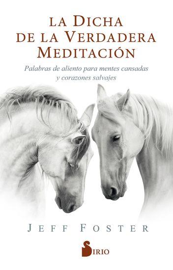 La dicha de la verdadera meditación - Palabras de aliento para mentes cansadas y corazones salvajes - cover