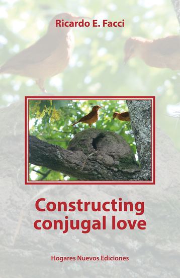 Constructing conjugal love - cover