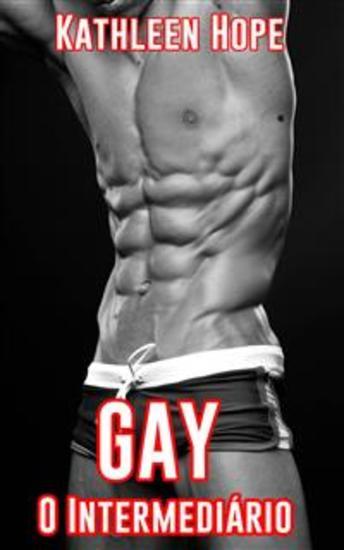 Gay: O Intermediário - cover
