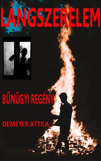 Lángszerelem - Bűnügyi regény - cover