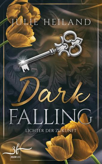 Dark Falling - Lichter der Zukunft - Liebesroman - cover
