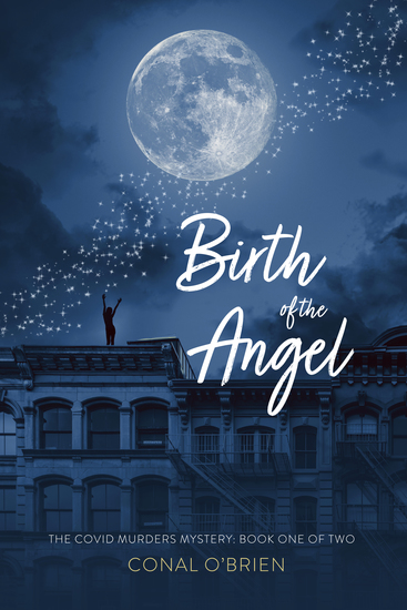 Birth of the Angel - The COVID Murders Mystery: Book One of Two - cover