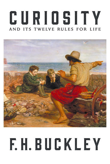 Curiosity - And Its Twelve Rules for Life - cover
