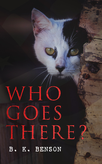Who Goes There? - The Story of a Spy in the Civil War - cover