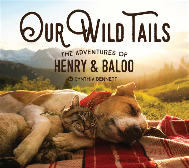 Our Wild Tails - The Adventures of Henry & Baloo - cover
