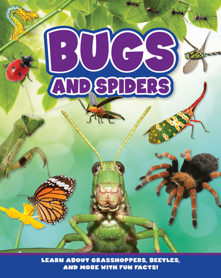 Bugs and Spiders - cover